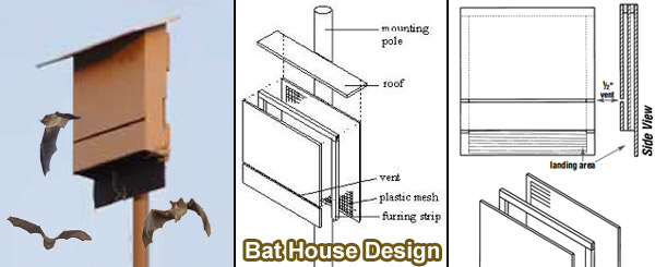 Avian accommodations or a guestroom with a view for How to make a bat house